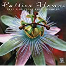 Passion Flower - Zoot Sims Plays Duke Ellington