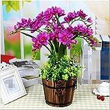 LSRHT Orchidee Vintage Set Künstliche Blumen Künstliches Leben Roombedroom Dekoration Silk Blume
