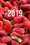 2019: Jan - Dez Wochenplaner | 365 Tage Terminkalender mit Uhrzeit | 1 Tag auf 1 Seite, ca. A5 | Erdbeeren