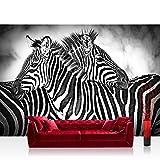 Vlies Fototapete 312x219cm PREMIUM PLUS Wand Foto Tapete Wand Bild Vliestapete - Afrika Tapete Zebra Streifen schwarz - weiß - no. 3576