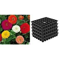 Kraft Seeds Zinnia Dahlia Flowers Mix GMO-free Seeds (Multicolour) & 5 Set Seed Tray Plant Grow Starting Germination Pro Tray 240 Cells, (5 Trays, 48 Cells E Combo