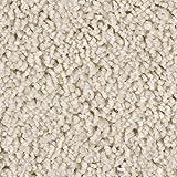 BODENMEISTER BM72375 Teppichboden Auslegware Meterware Hochflor Shaggy Langflor Velour weiß 400 und 500 cm breit, Verschiedene Längen, Variante, 4 x 5 m