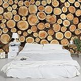 Apalis Vliestapete Holz Nummer YK18 Baumstämme Breit | Vlies Tapete Wandtapete Wandbild Foto 3D Fototapete für Schlafzimmer Wohnzimmer Küche | braun, 104860