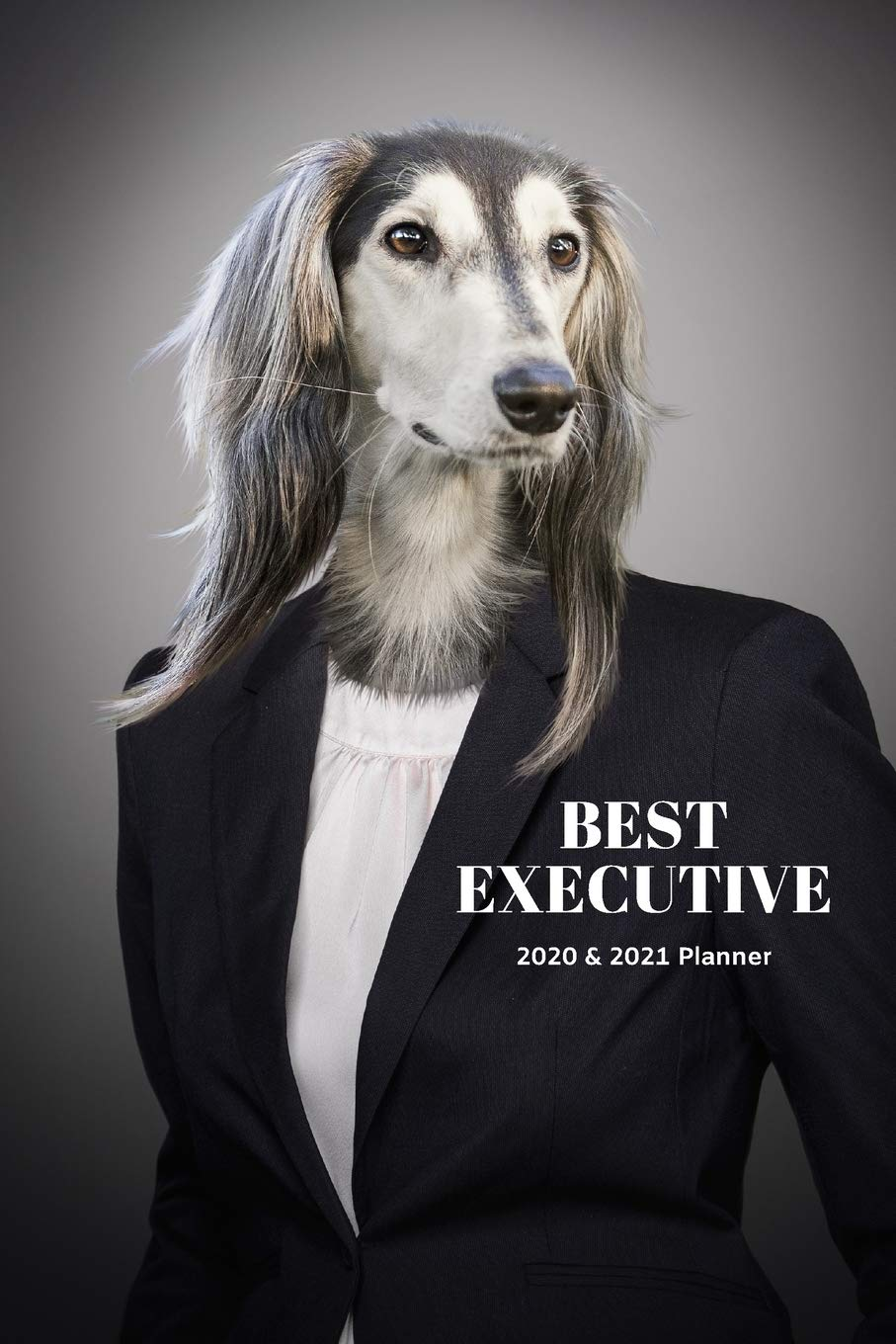 Best Executive Afghan Hound Dog 2020 & 2021 Weekly Planner | Two Year Appointment Book Gift | Agenda Notebook for New…
