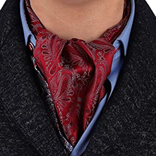 Epoint Men's Fashion Classic Paisley Cravat Microfiber Ascot Tie Hanky Set, With Gift Box Set - Red - One size