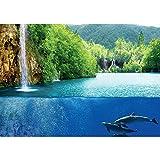 Vlies Fototapete PREMIUM PLUS Wand Foto Tapete Wand Bild Vliestapete - Delfine Tiere Wasser Wasserfall Bäume Wald - no. 2043, Größe:254x184cm Vlies