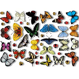 Articlings 25 Realistic Butterflies & 17 Ladybird Window Clings by Non-adhesive Stickers Quickly Decorate and Brighten your Windows