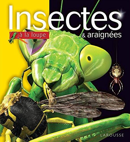 Les insectes et araignées NP