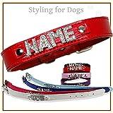 C1 Hundehalsband mit Namen Strass Hund Halsband Name Buchstaben PU-Leder