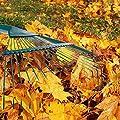 Wetour Edelstahl Garten Laubbesen Laub Rechen Mit Elastizität, 22 Zinken Gartenbesen Rasenrechen Gartenzubehör Zum Zusammenfegen Von Laub Oder Grasschnitt