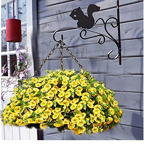 WORTH Ganci a parete appendiabiti ferro nero Piante Vaso da fiori Staffa w/anticorrosivo Verniciatura a polvere e scoiattolo Lovely forma