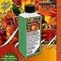 Taglilien Dünger Hemerocallis düngen, Premium Flüssigdünger aus der Profi Linie von GREEN24 bei Du und dein Garten