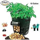 Kartoffel-Wachsen-Taschen, Garten-Gemüse-Pflanzer-Taschen mit Garten-Handschuhen, 2 Pack 10 Gallonen-Pflanzer-Taschen mit Zugriffs-Klappe, angehobenes Garten-Bett passend für das Pflanzen von Gemüse, Kartoffel, Wasserbrotwurzel, Rettich, Karotten