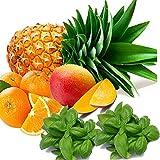 Fresh Basil & Citrus Scented Potpourri EXTRA STRONG x 20gms Vegan & Cruelty Free