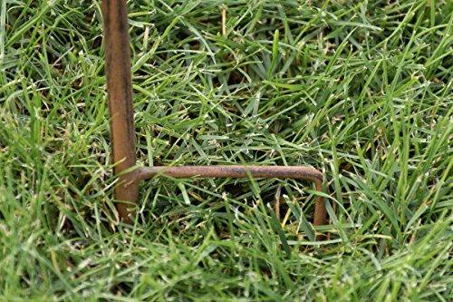 CLP Pflanzen-Rankstab Benita aus Eisen