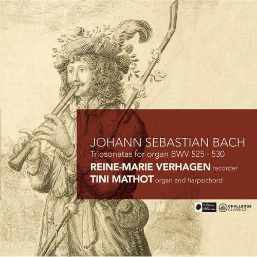 Sonata III, BWV 527: III. Vivace