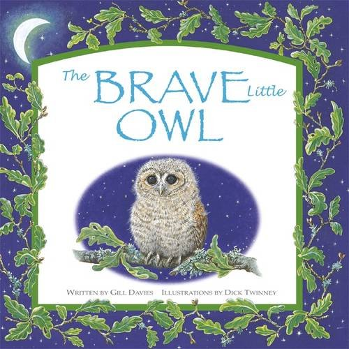 Brave Little Owl (Spring Picture Book)