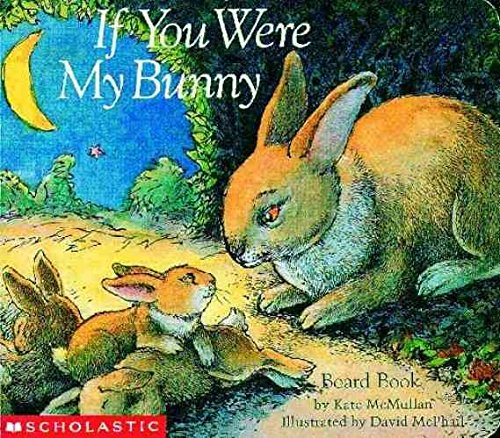 if-you-were-my-bunny-by-kate-mcmullan-published-march-1998