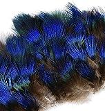 ERGEOB Pfauenfedern blaufedern DIY Basteln Federn 6-8 cm (2-3 Zoll) Länge -