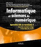 Informatique et sciences du numérique: Spécialité ISN en terminale S