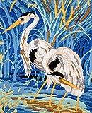 Anchor Stitch Kit-Elegant Birds