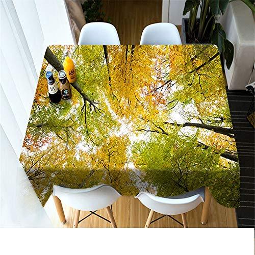 QWEASDZX Tischdecke Einfache und Moderne Polyester 3D Digitaldruck dekorative Tischdecke Geeignet für Innen- und Außenbereich Wiederverwendbare rechteckige Tischdecke 90x90cm