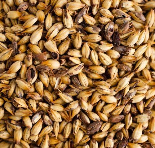 Muntons Crystal 90L Malt Brewing EBC 240 Malt Whole Grain 1lb Bag by - Crystal Malt