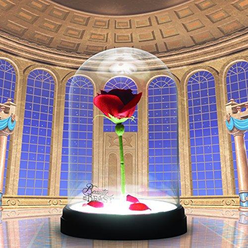 Die Schöne und das Biest Enchanted Rose, mehrfarbig
