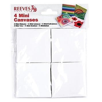Reeves - 4 tele per pittura piccole, 6,4 x 7 cm: Amazon.it: Casa e ...