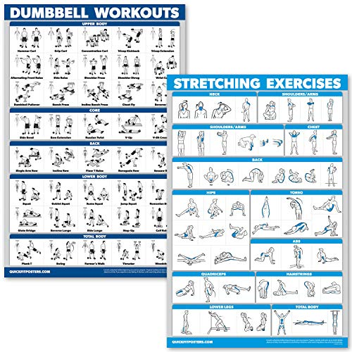 QuickFit Kurzhantel-Übungsposter-Set - laminiertes 2-Diagramm-Set - Kurzhantel-Übungen & Stretch-Workouts, Laminated, 18