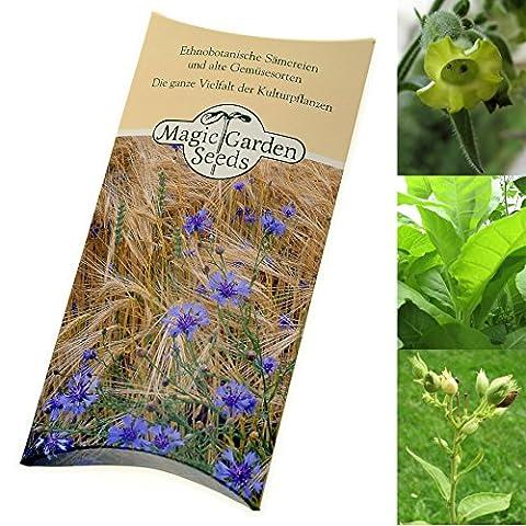 Kit de graines: 'Tabac à shisha', 3 variétés de tabac
