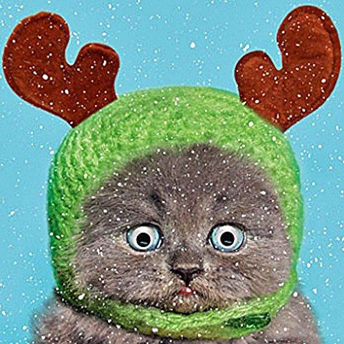 Katze in Rentier Hut einzeln Weihnachtskarte 3D Kulleraugen Moving Ösen