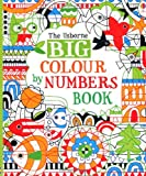 Big Colour by Numbers Book (Usborne Colour By Numbers)