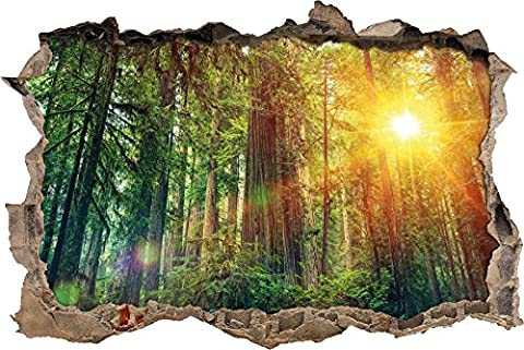 Forest sunlight Wall breakthrough in 3D look, wall or door stickers, wall stickers, wall sticker, wall decoration