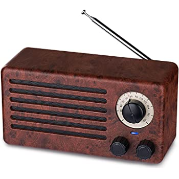 Bluetooth Speaker, Fooxon Portable Wooden Wireless: Amazon