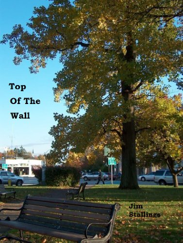 ebook: Top of the Wall (B00C00YTEQ)