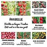 6 Exklusive Bio - Tomatensamen für eine bunte Tomatenernte - Black Cherry, Hellfrucht, Matina, Anabelle, Principe Borghese, Gelbe Johannisbeere in Bio Qualität - Jede Sorte beinhaltet 10 Korn