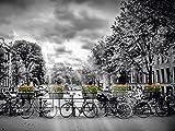 Artland QualitätsbilderAlu Dibond Bilder Alu Art 80 x 60 cm Fahrzeuge Fahrräder Foto Schwarz Weiß A4DG Amsterdam Herengracht Sonnenstrahlen