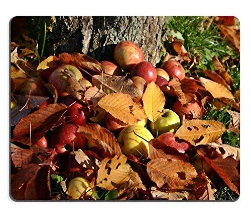 jun-xt-mousepad-caqui-persimon-kaki-arbol-de-fruta-de-goma-natural-material-imagen-529436