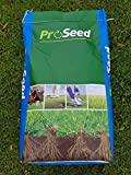 Best Grass Seeds - 2Kg Rapid PRO Seed Premium Quality Grass Seed Review
