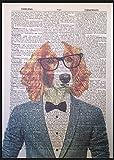 Springer Spaniel Vintage diccionario página pared Art imagen impresión perro Animal traje