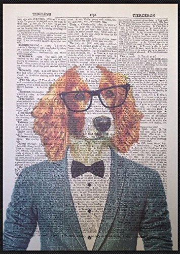Springer Spaniel vintage Dictionary page Picture Wall Art Print Dog Animal tuta