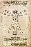 Postereck - 0125 - Zeichnung Leonardo da Vinci Gesundheit - Poster 3:2-61.0 cm x 40.5 cm