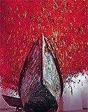 Chiharu Shiota - The Key in the Hand