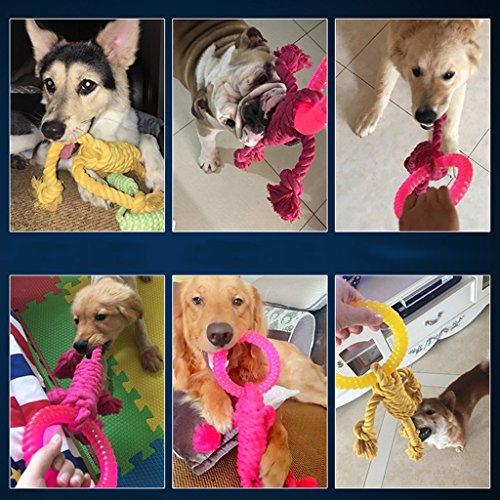 Zoom IMG-3 giocattolo cane grande interattivo spesso