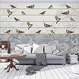 DekoShop Fototapete Vlies Tapete Moderne Wanddeko Wandtapete Vögel auf der Schnur AMD12062VEXXXXL VEXXXXL (416cm. x 290cm.)