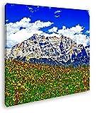 Blumenwiese in den Alpen Format: 70x70 Effekt: Zeichnung als Leinwandbild, Motiv fertig gerahmt auf Echtholzrahmen, Hochwertiger Digitaldruck mit Rahmen, Kein Poster oder Plakat