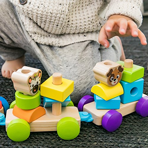 Baby Einstein HAPE, Discovery Train Wooden Toy