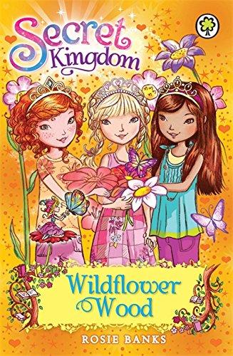 Wildflower Wood: Book 13 (Secret Kingdom)