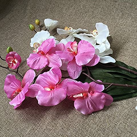 THWS Emulation flower damask then support the moth orchid artificial artificial flowers ,pink no vase